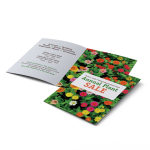 A6 Folded Brochures - 4 Page Foldout
