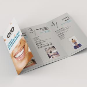 DL Folded Brochure - 8 Page Foldout