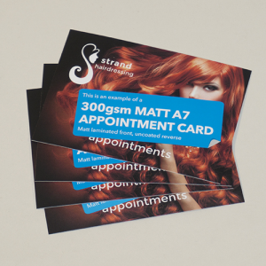 300gsm Pocket Appointment Cards