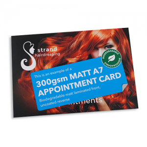 300gsm Appointment Cards