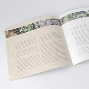 Brochures carrées : 170g