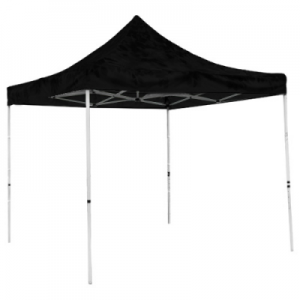 Gazebo frame and canopy