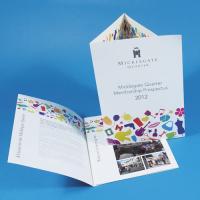 Gloss Lite Folded Leaflets