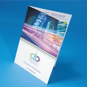 Folded Leaflets Professional