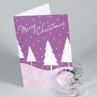 Christmas Cards | Matt Laminated