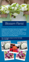 Florist  1/3rd A4 Leaflets by Templatecloud